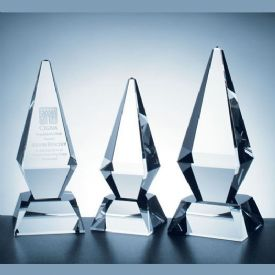 Excellence Crystal Award