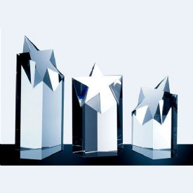 Super Star Tower Award